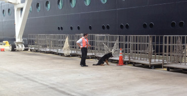 Cruise Ship Work at NY Port